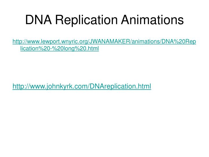 DNA Replication Animations