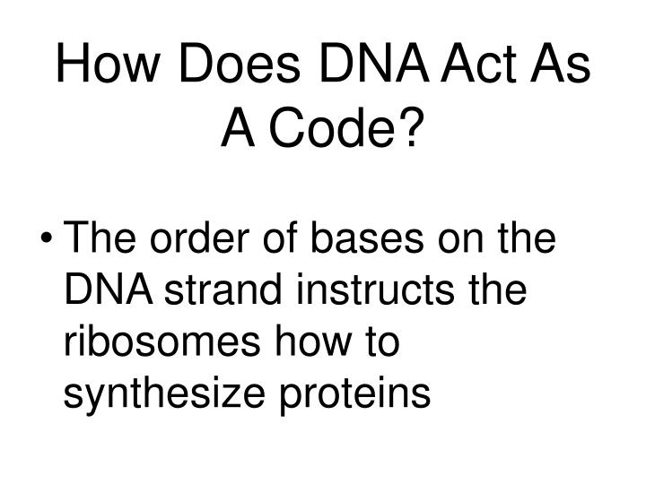 How Does DNA Act As A Code?