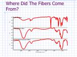 where did the fibers come from