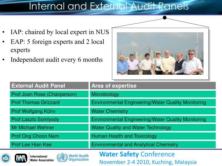 Internal and External Audit Panels