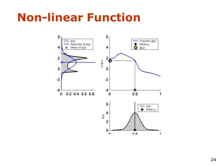 Non-linear Function