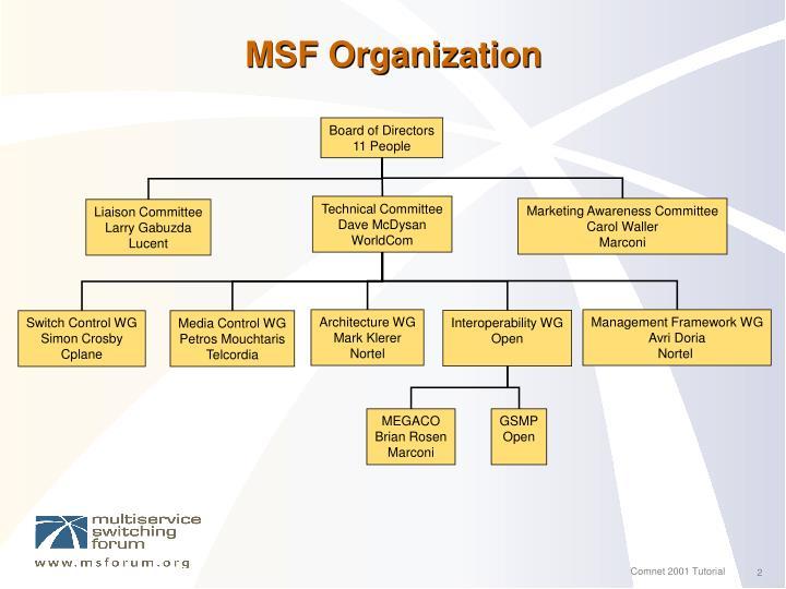 Msf organization