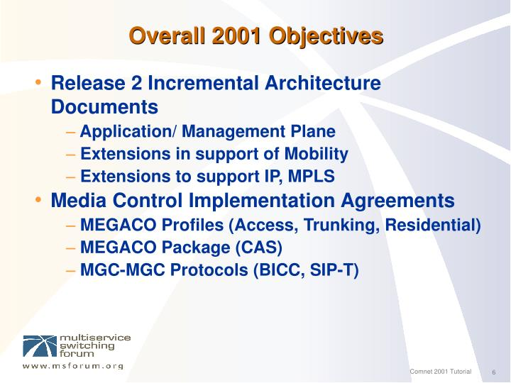 Overall 2001 Objectives