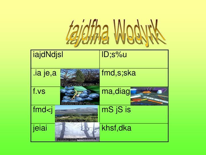 tajdfha WodyrK