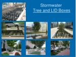 stormwater tree and lid boxes