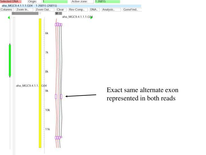 Exact same alternate exon represented in both reads