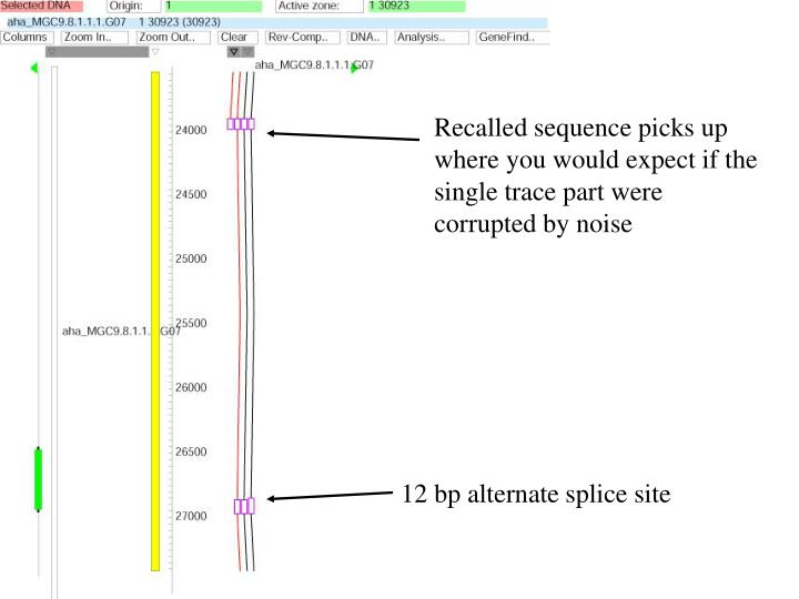 Recalled sequence picks up where you would expect if the single trace part were corrupted by noise