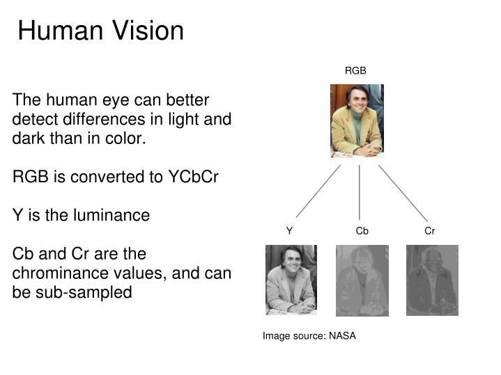 The human eye can better detect differences in light and dark than in color.