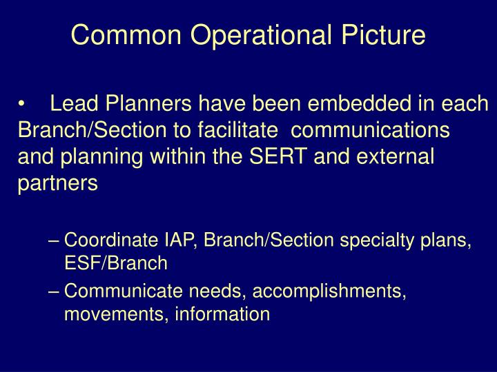 Lead Planners have been embedded in each Branch/Section to facilitate  communications and planning within the SERT and external partners