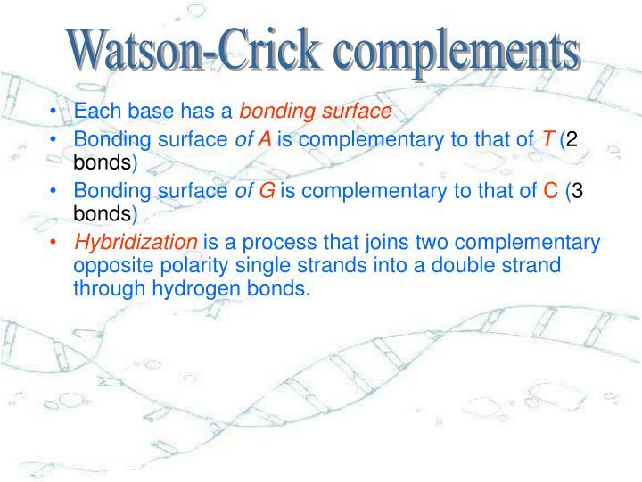 Watson-Crick complements