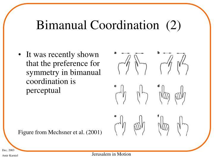 Bimanual Coordination