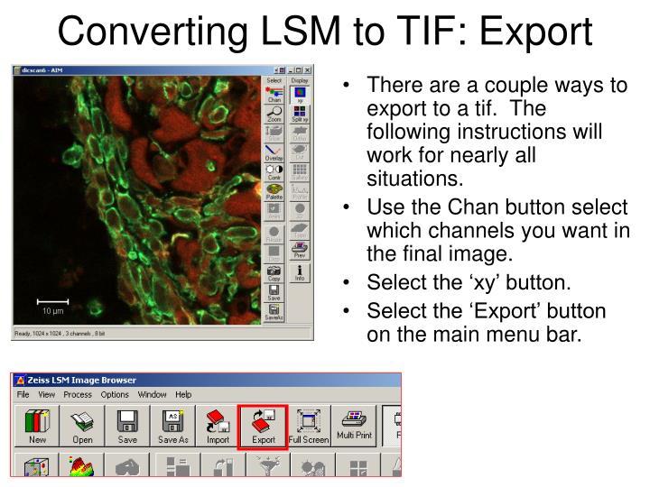 Converting LSM to TIF: Export
