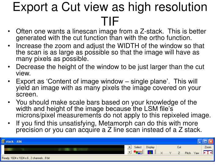 Export a Cut view as high resolution TIF