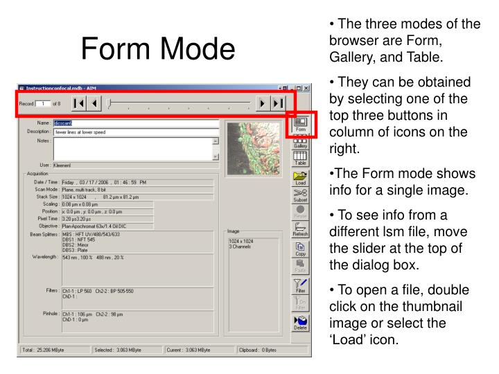 The three modes of the browser are Form, Gallery, and Table.
