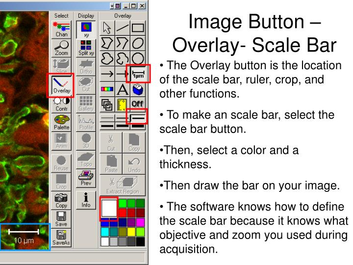 Image Button – Overlay- Scale Bar