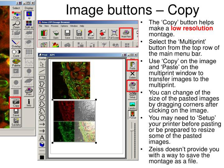 Image buttons – Copy