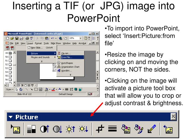Inserting a TIF (or  JPG) image into PowerPoint