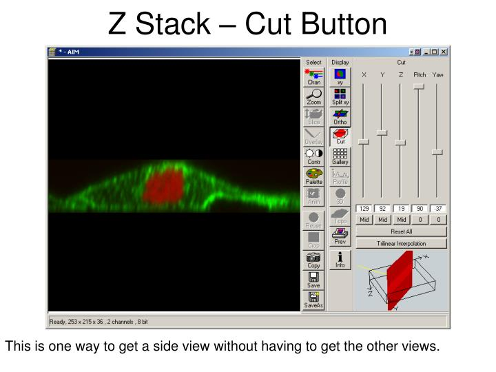 Z Stack – Cut Button
