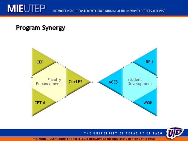 Program Synergy