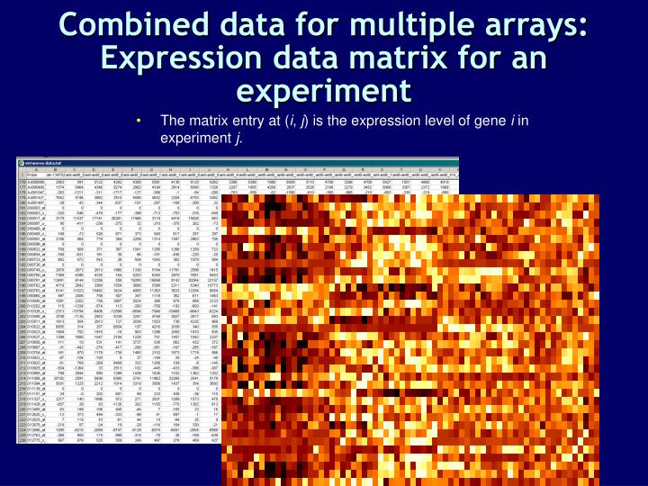 Combined data for multiple arrays: Expression data matrix for an experiment