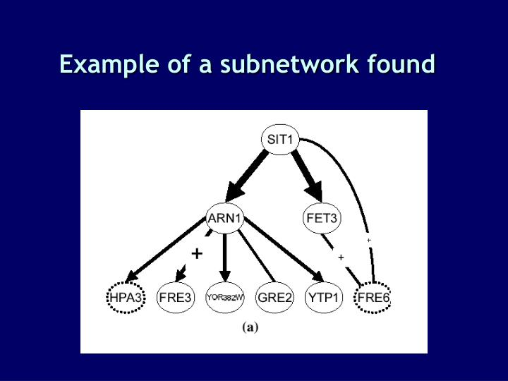 Example of a subnetwork found