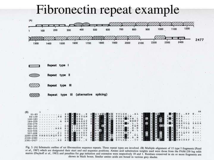Fibronectin repeat example
