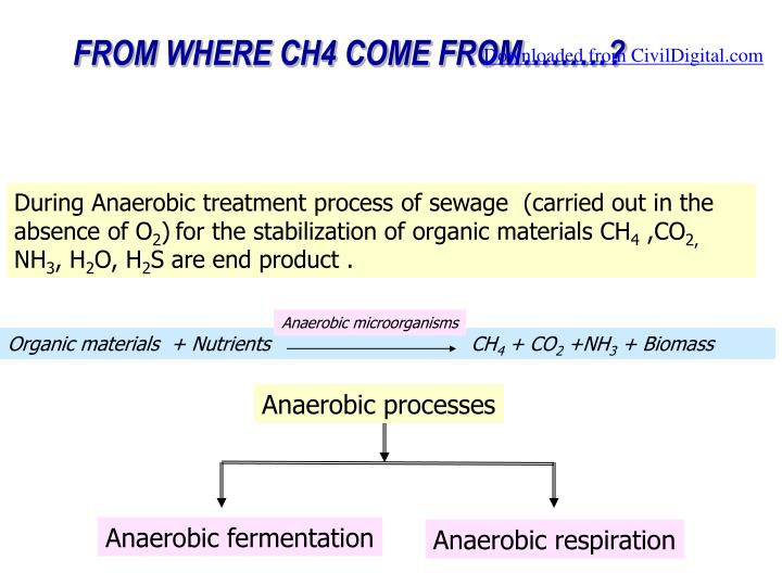 During Anaerobic treatment process of sewage  (carried out in the absence of O