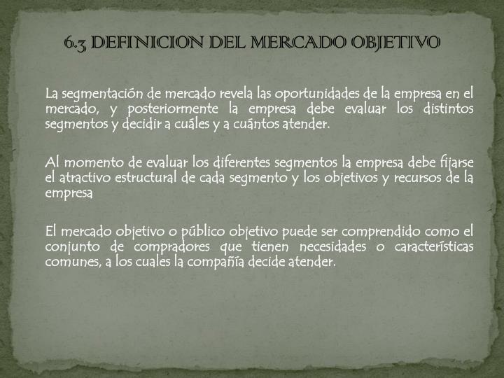6.3 DEFINICION DEL MERCADO OBJETIVO