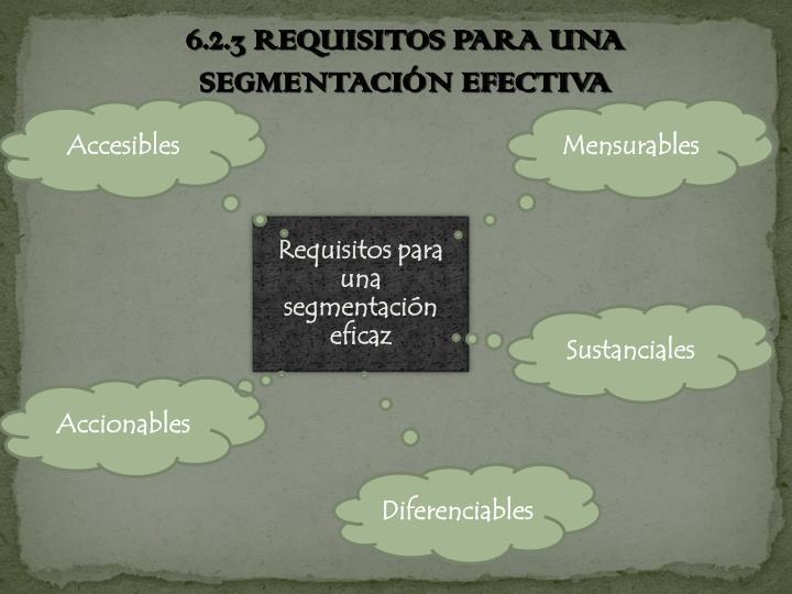 6.2.3 REQUISITOS PARA UNA SEGMENTACIÓN EFECTIVA