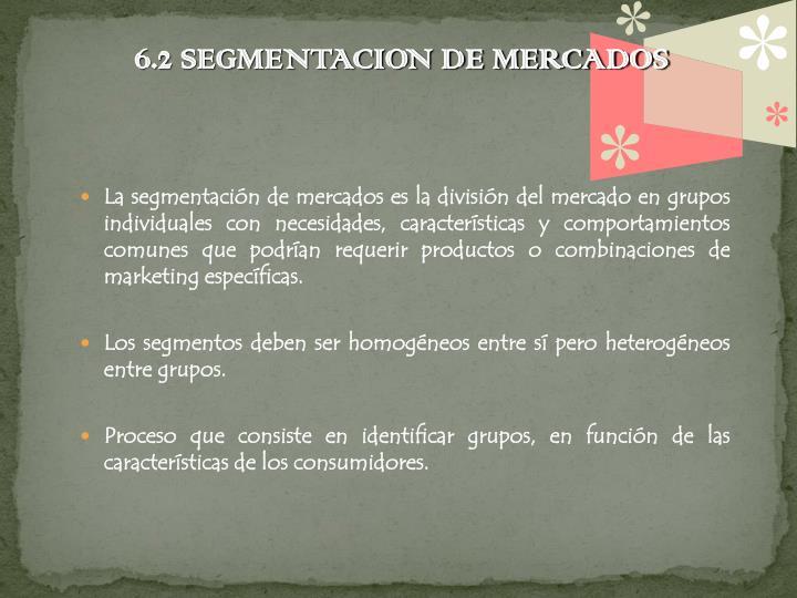 6.2 SEGMENTACION DE MERCADOS
