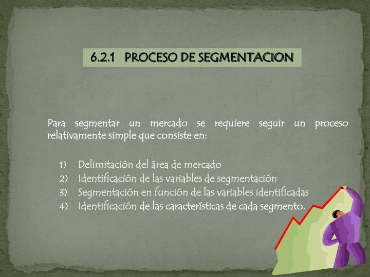 6.2.1   PROCESO DE SEGMENTACION