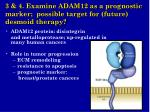 3 4 examine adam12 as a prognostic marker possible target for future desmoid therapy