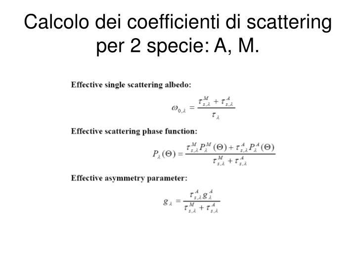 Calcolo dei coefficienti di scattering per 2 specie: A, M.