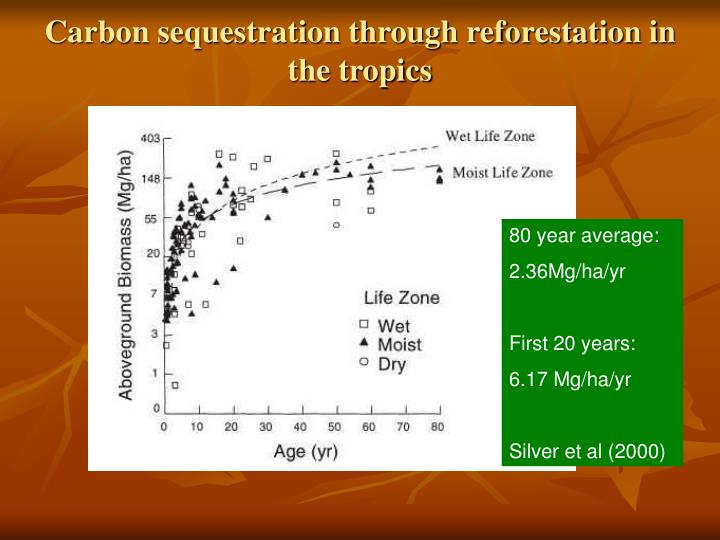 Carbon sequestration through reforestation in the tropics
