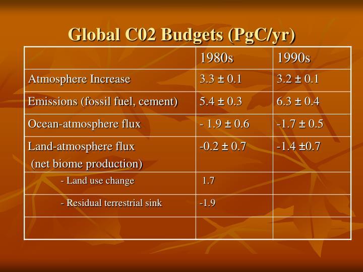 Global C02 Budgets (PgC/yr)