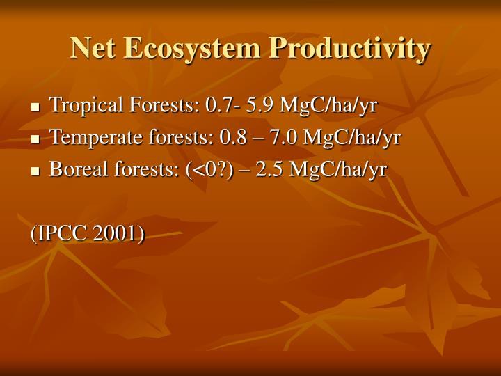 Net Ecosystem Productivity