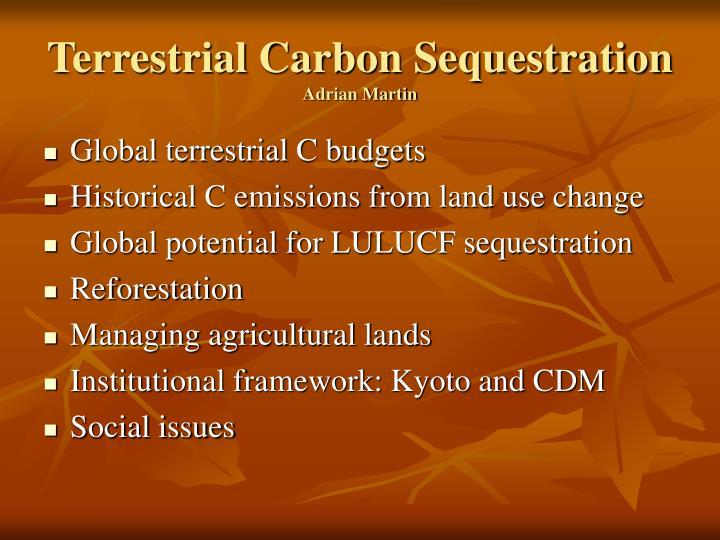 Terrestrial carbon sequestration adrian martin