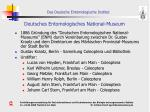 deutsches entomologisches national museum