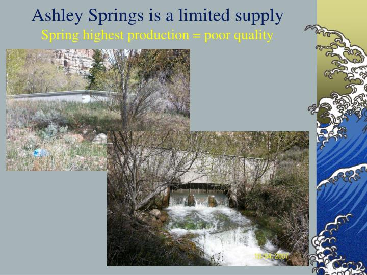 Ashley Springs is a limited supply