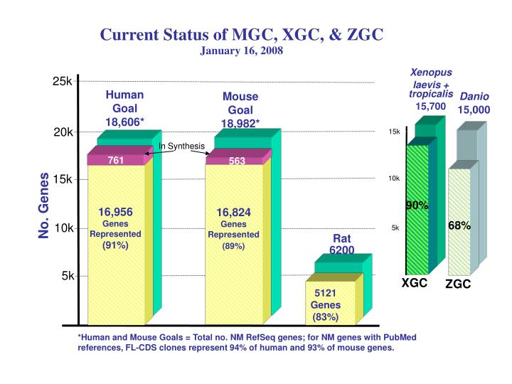 Current Status of MGC, XGC, & ZGC