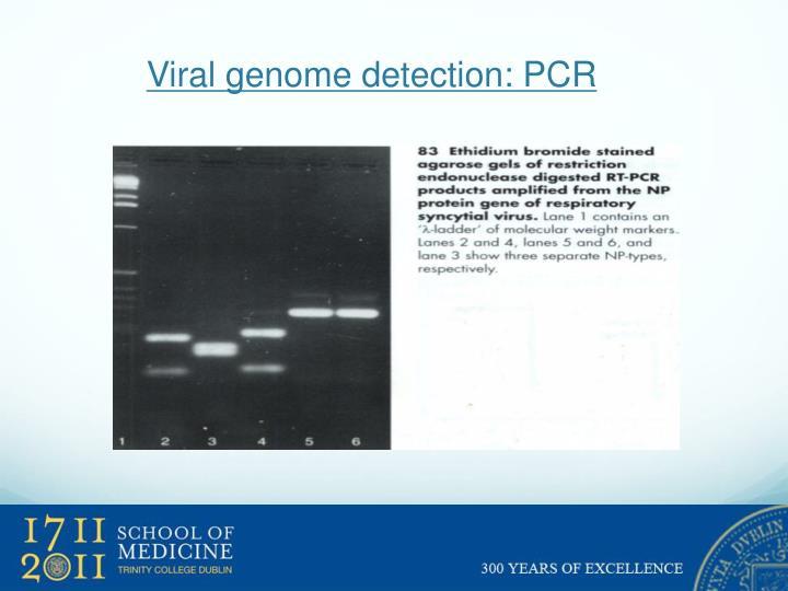Viral genome detection: PCR