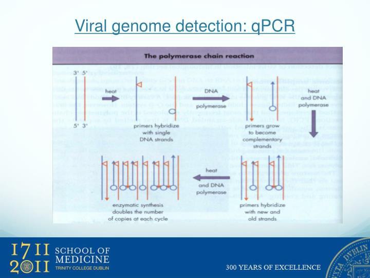 Viral genome detection: qPCR