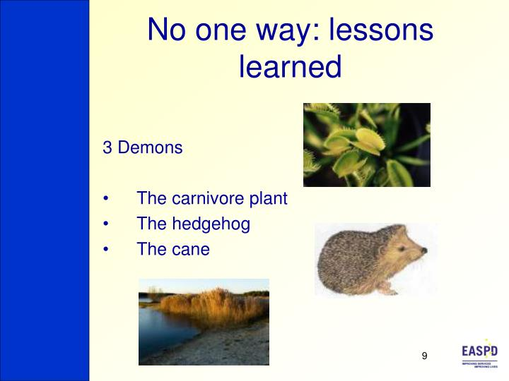 No one way: lessons learned