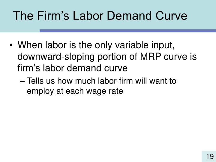 The Firm's Labor Demand Curve
