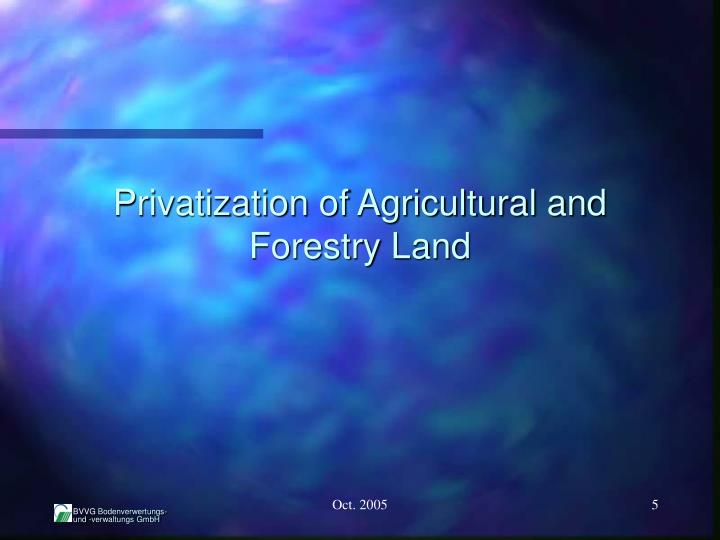 Privatization of Agricultural and Forestry Land