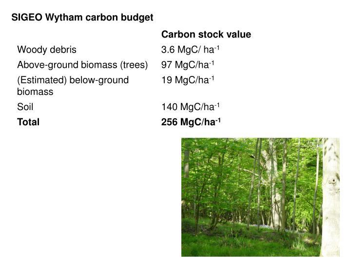 SIGEO Wytham carbon budget
