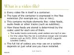 what is a video file