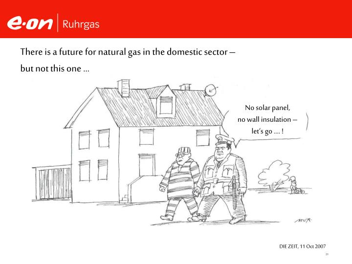 There is a future for natural gas in the domestic sector –