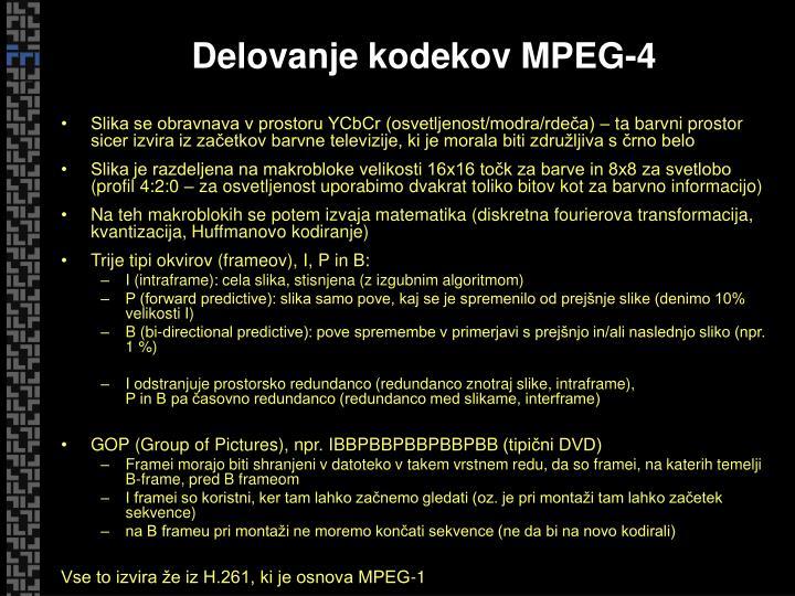 Delovanje kodekov MPEG-4