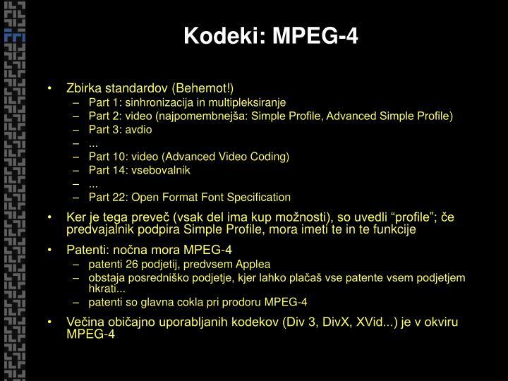 Kodeki: MPEG-4